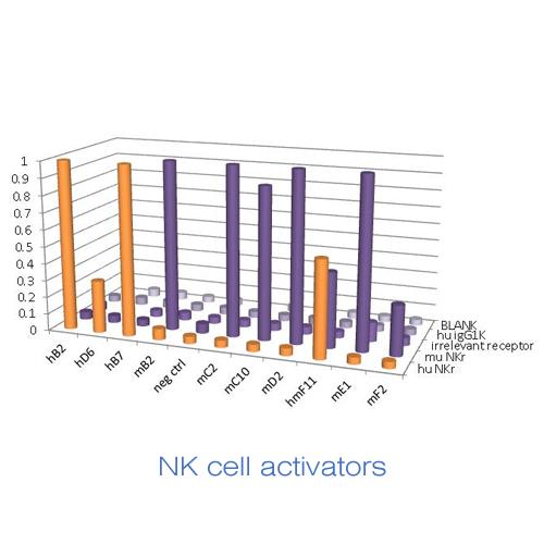 Cyclogenix Discovery Antibody